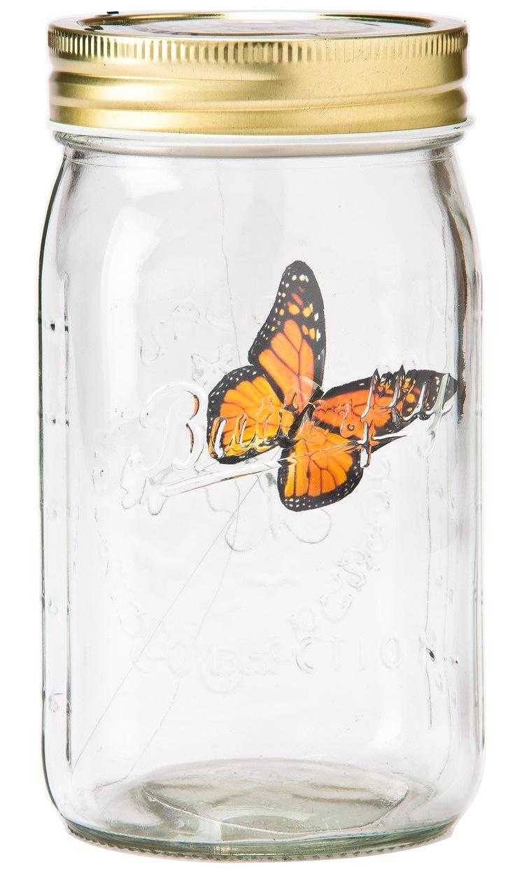 Einfach nur genial: Der Elektronische Schmetterling