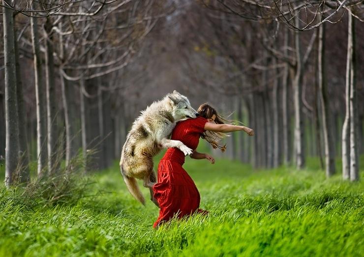 """fotokunst von shlomi nissim """"rotkäppchen und der wolf"""
