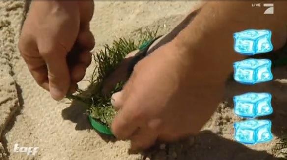 taff hat unsere Rasen Flip Flops getestet