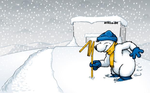 Unser Arktisbär misst schon mal die Schneetiefe