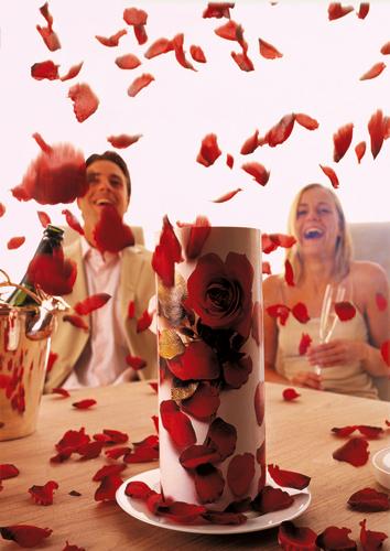 Das original Rosenfeuerwerk. Ein Feuerwerk der Romantik.